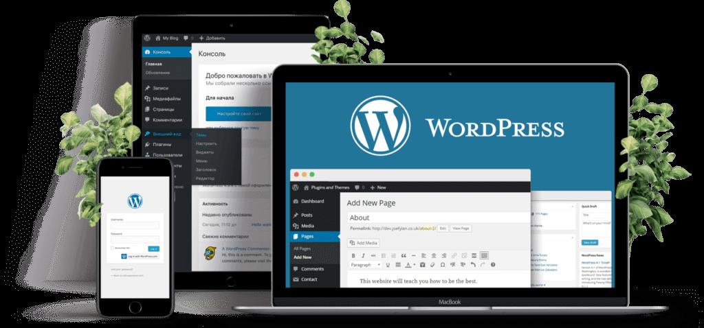 Преимущества и особенности CMS WordPress